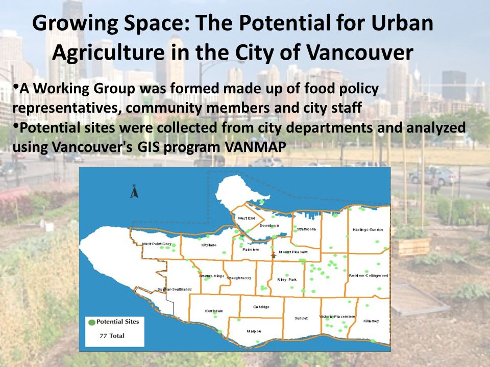 Growing Space: The Potential for Urban Agriculture in the City of Vancouver A Working Group was formed made up of food policy representatives, communi