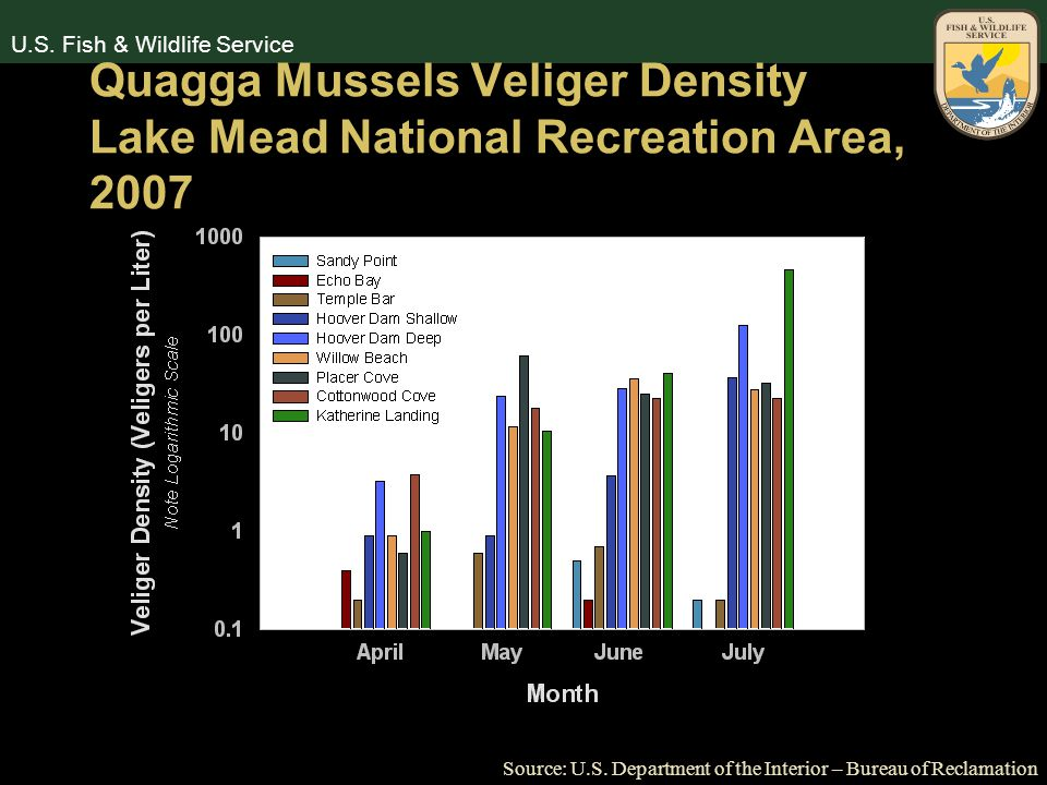 U.S. Fish & Wildlife Service Quagga Mussels Veliger Density Lake Mead National Recreation Area, 2007 Source: U.S. Department of the Interior – Bureau