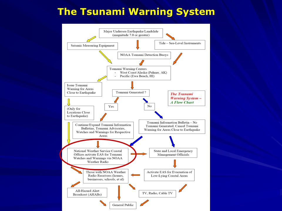 The Tsunami Warning System