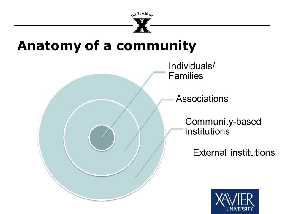 Individuals/ Families Associations Community-based institutions Anatomy of a community External institutions