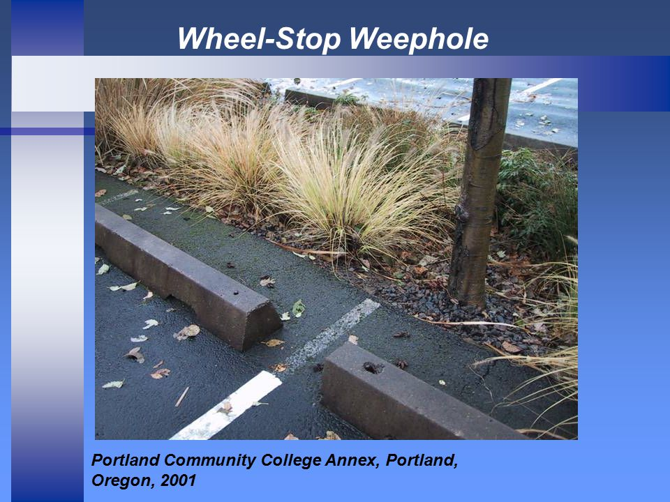 Wheel-Stop Weephole Portland Community College Annex, Portland, Oregon, 2001
