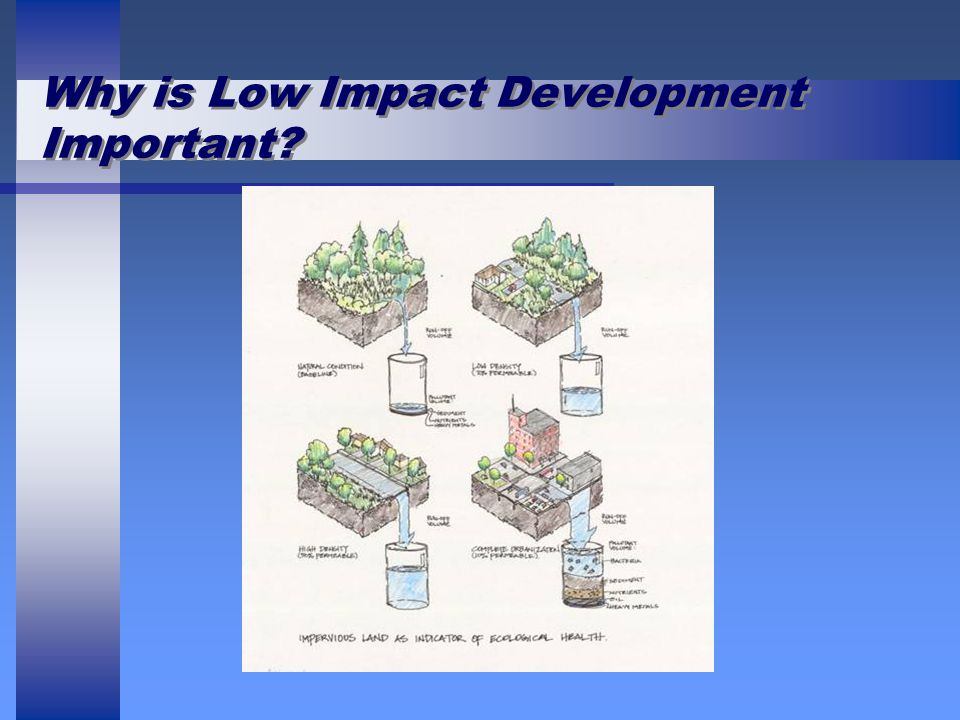 Why is Low Impact Development Important?