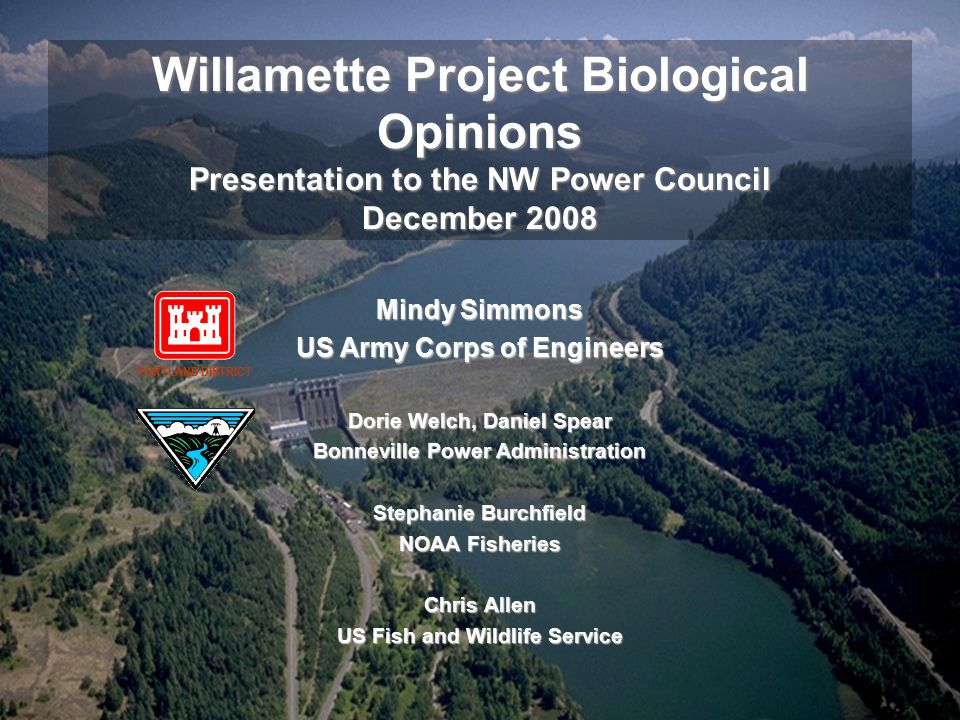 Mindy Simmons US Army Corps of Engineers Dorie Welch, Daniel Spear Bonneville Power Administration Stephanie Burchfield NOAA Fisheries Chris Allen US