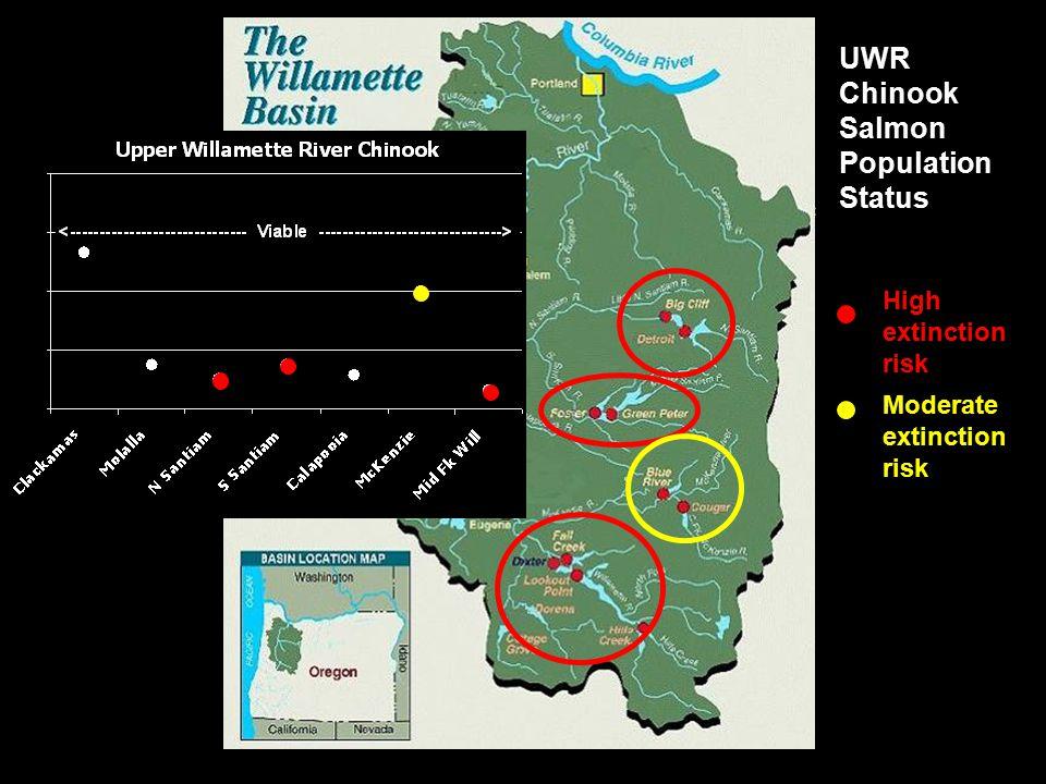UWR Chinook Salmon Population Status High extinction risk Moderate extinction risk
