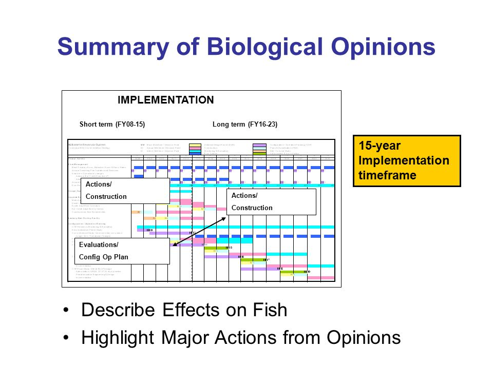 Summary of Biological Opinions Describe Effects on Fish Highlight Major Actions from Opinions Short term (FY08-15)Long term (FY16-23) Actions/ Constru