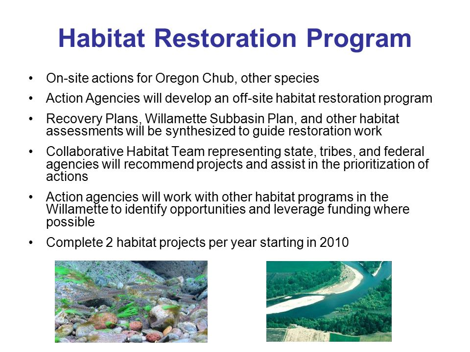 Habitat Restoration Program On-site actions for Oregon Chub, other species Action Agencies will develop an off-site habitat restoration program Recove