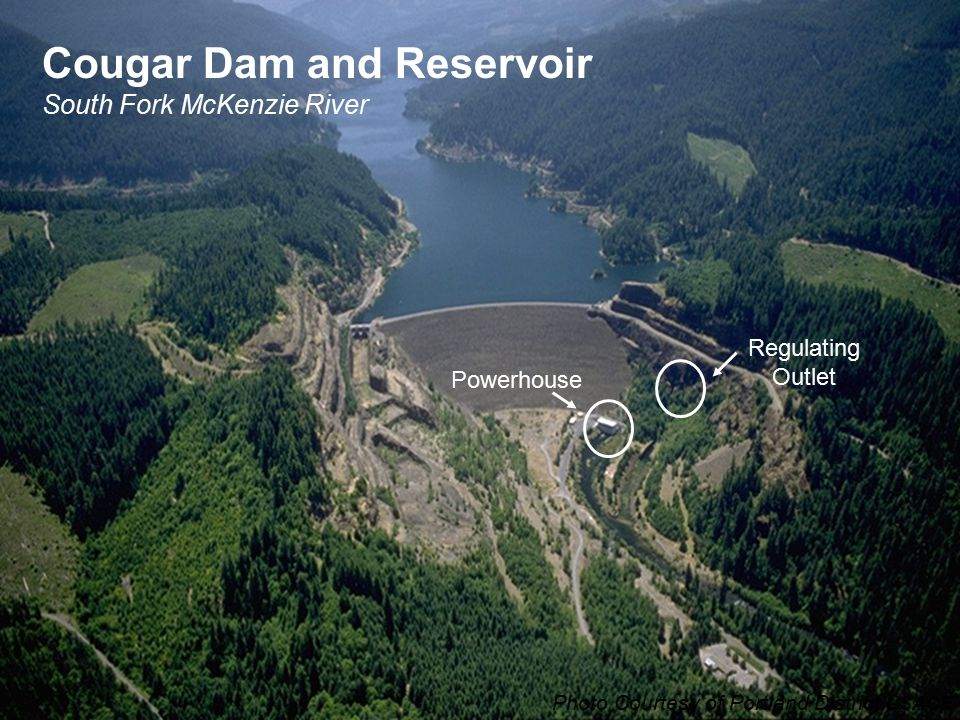 Cougar Dam and Reservoir South Fork McKenzie River Photo Courtesy of Portland District USACE Powerhouse Regulating Outlet