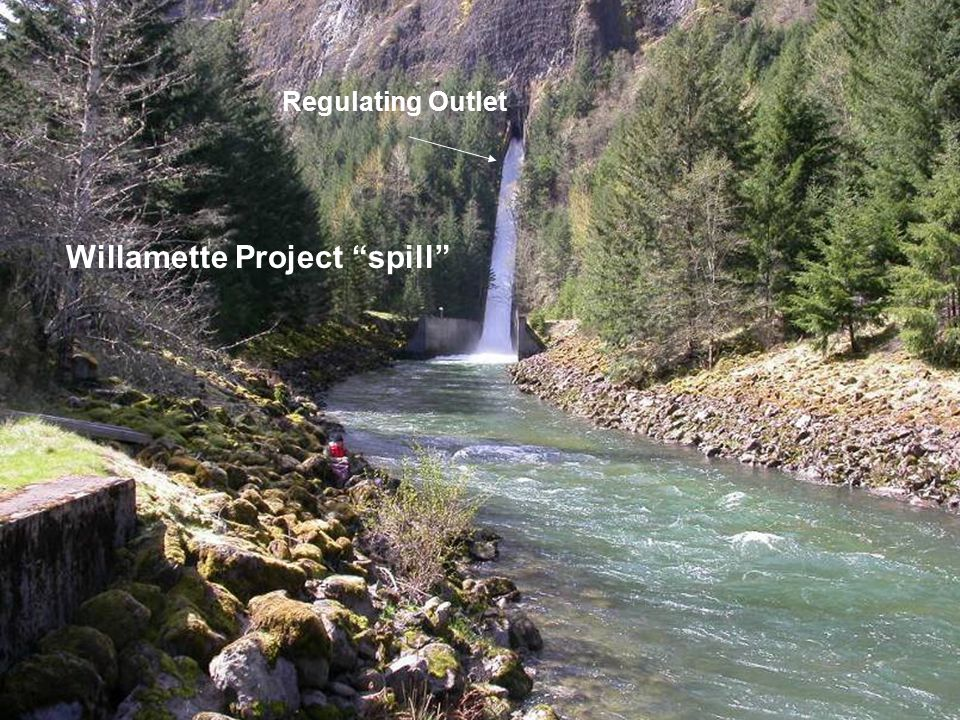 """Photograph of the instruments located in the RO channel Regulating Outlet Willamette Project """"spill"""""""