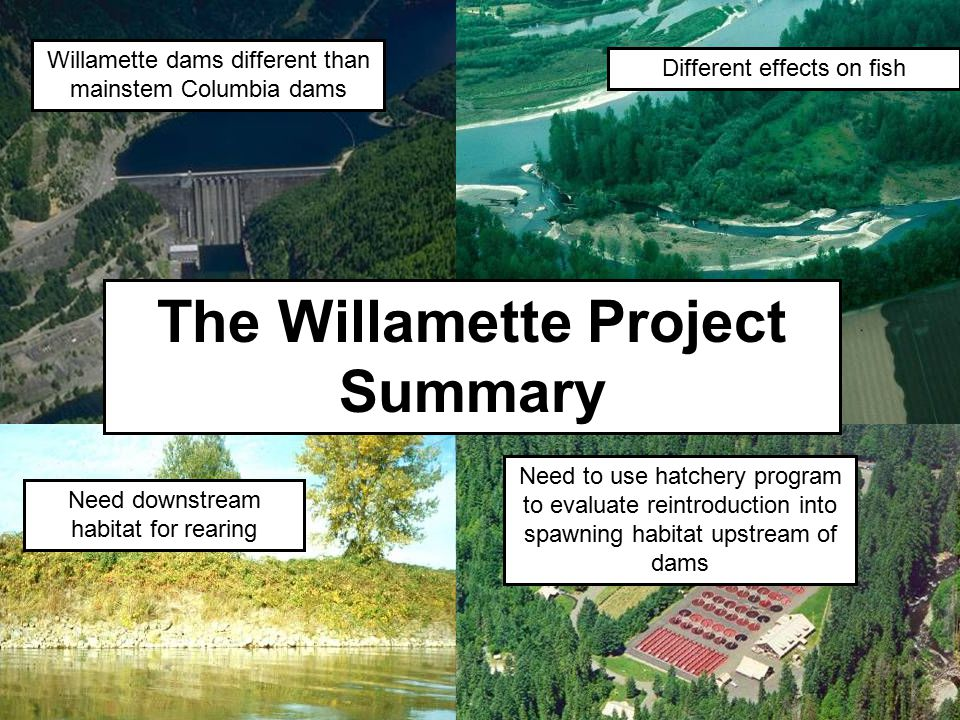 Need downstream habitat for rearing Different effects on fish Willamette dams different than mainstem Columbia dams The Willamette Project Summary Nee