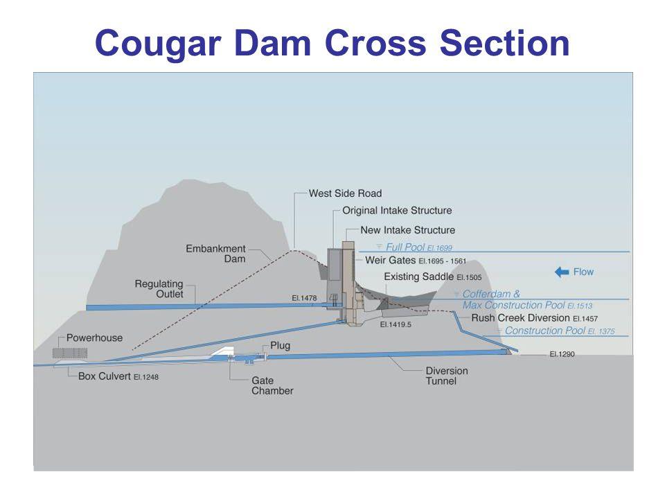 Cougar Dam Cross Section