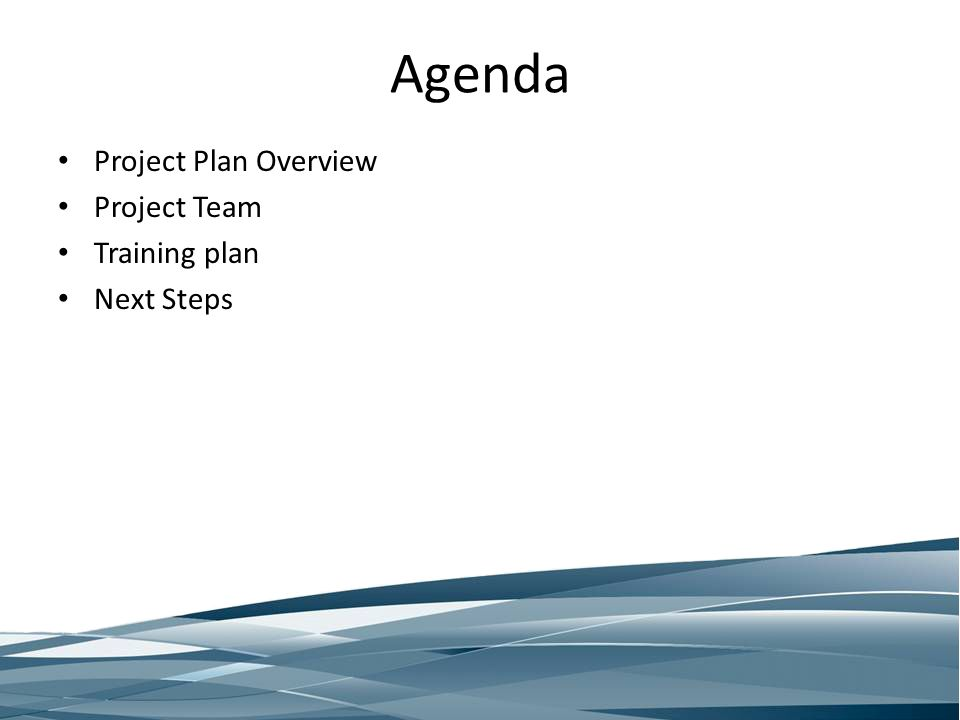 Agenda Project Plan Overview Project Team Training plan Next Steps