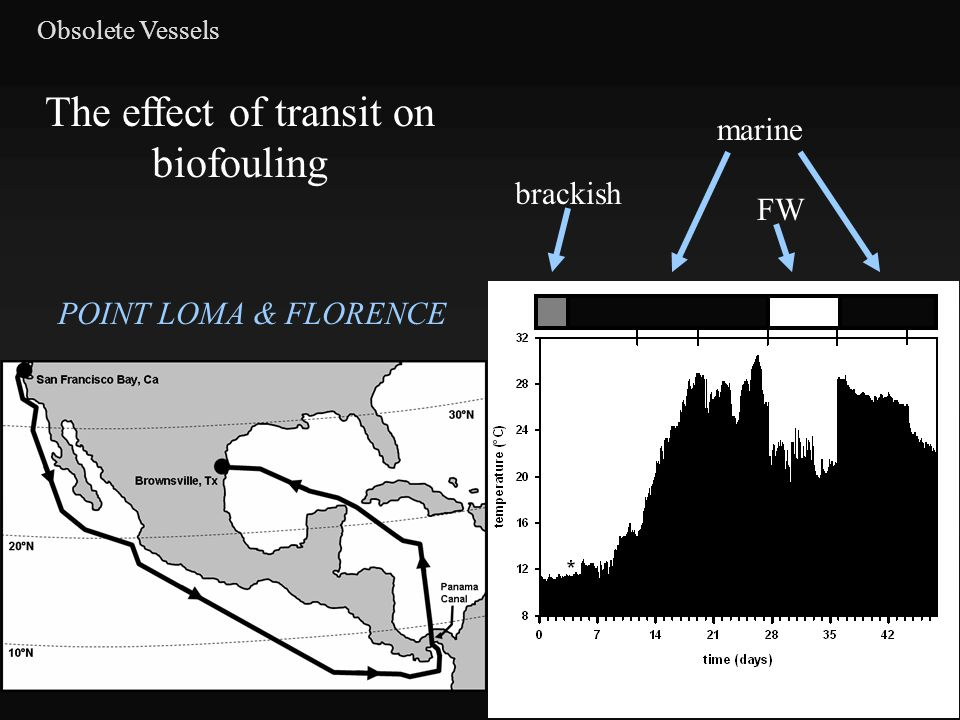 Obsolete Vessels brackish marine FW The effect of transit on biofouling POINT LOMA & FLORENCE