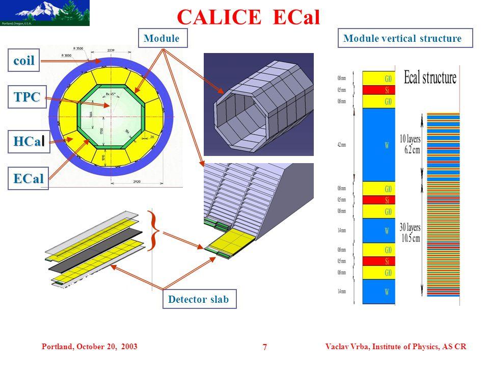Portland, October 20, 2003Vaclav Vrba, Institute of Physics, AS CR 7 CALICE ECal TPC ECal HCa l tungsten coil ModuleModule vertical structure Detector