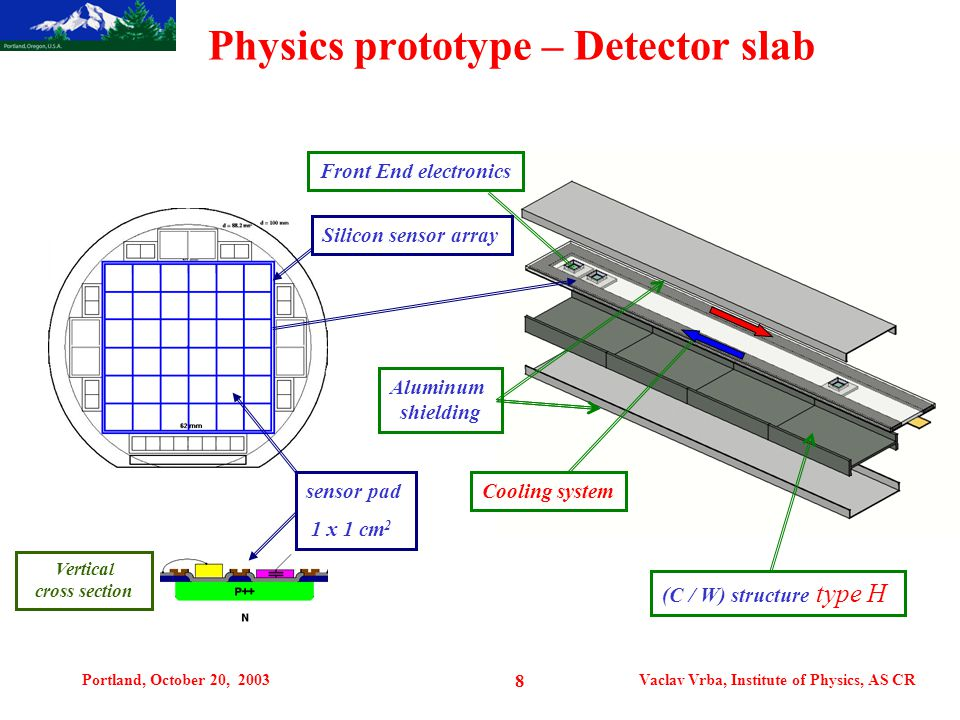 Portland, October 20, 2003Vaclav Vrba, Institute of Physics, AS CR 8 Physics prototype – Detector slab (C / W) structure type H Front End electronics Cooling system Aluminum shielding Silicon sensor array sensor pad 1 x 1 cm 2 Vertical cross section