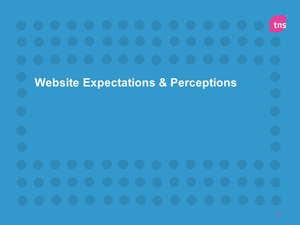 24 Website Expectations & Perceptions