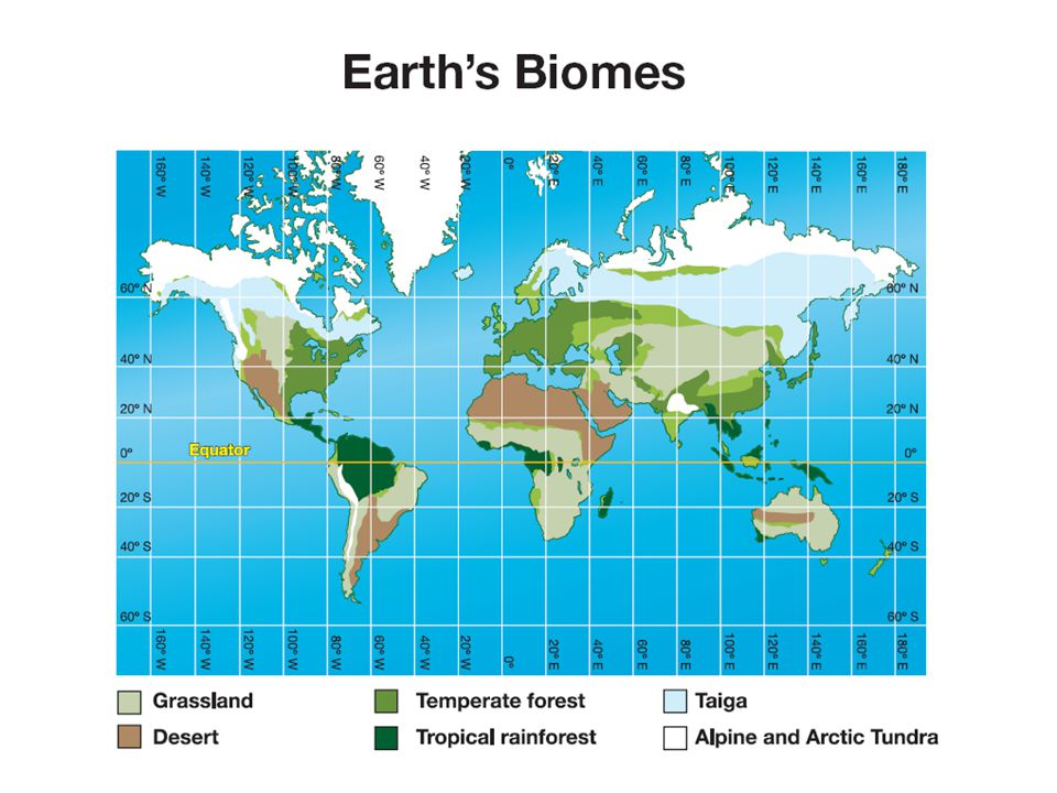 6.1 Climates and Biomes Each biome has a unique set of plants and animals that thrive in its climate.