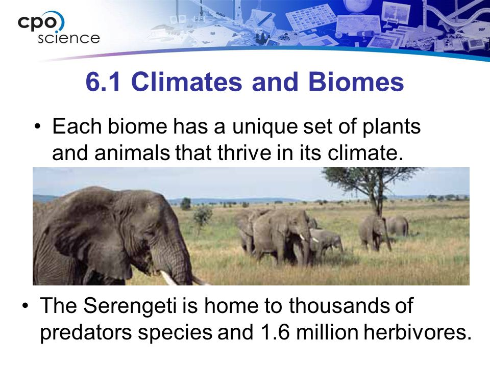 6.1 Climates and Biomes Humidity is related to plant and animal diversity.