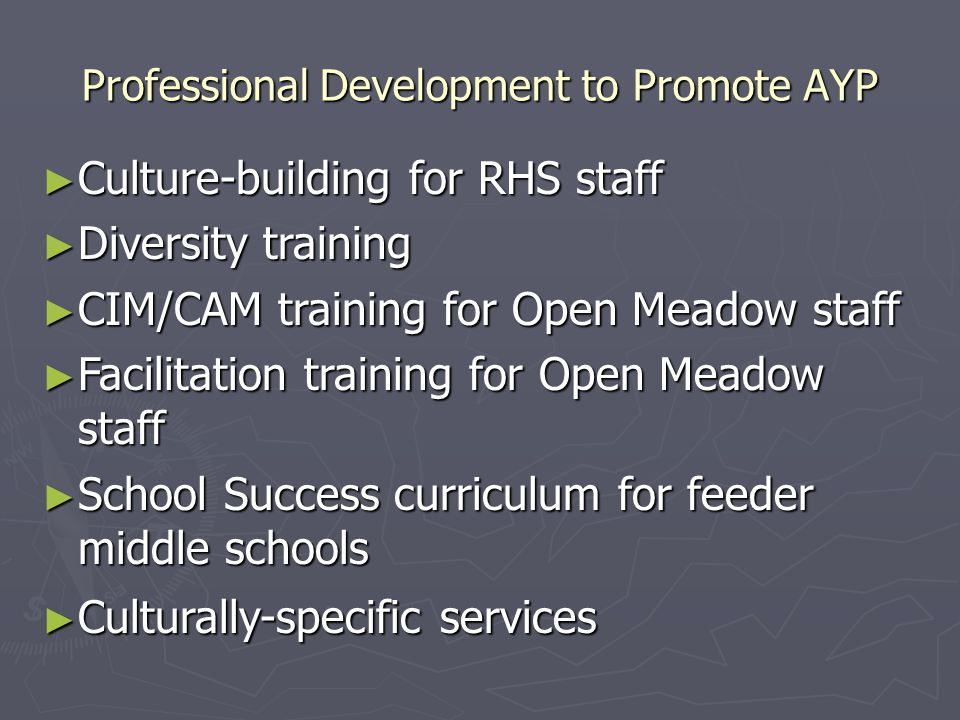 Professional Development to Promote AYP ► Culture-building for RHS staff ► Diversity training ► CIM/CAM training for Open Meadow staff ► Facilitation training for Open Meadow staff ► School Success curriculum for feeder middle schools ► Culturally-specific services