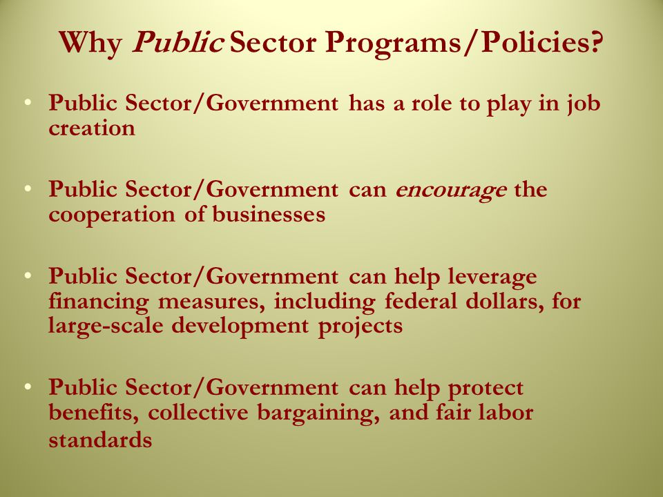 Why Public Sector Programs/Policies.