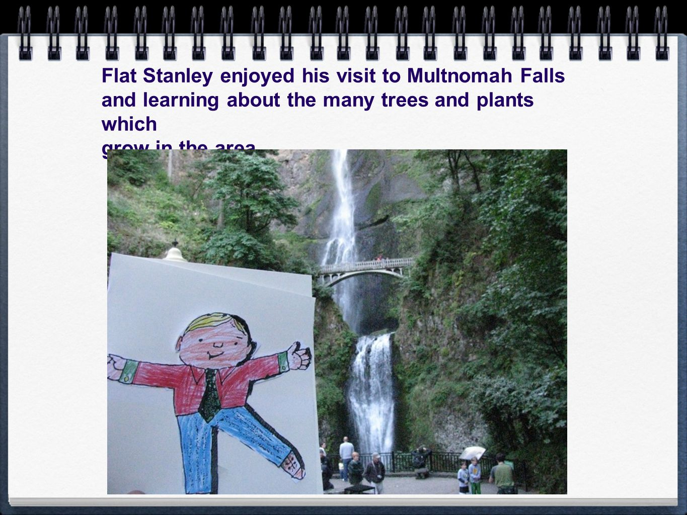 Flat Stanley enjoyed his visit to Multnomah Falls and learning about the many trees and plants which grow in the area.