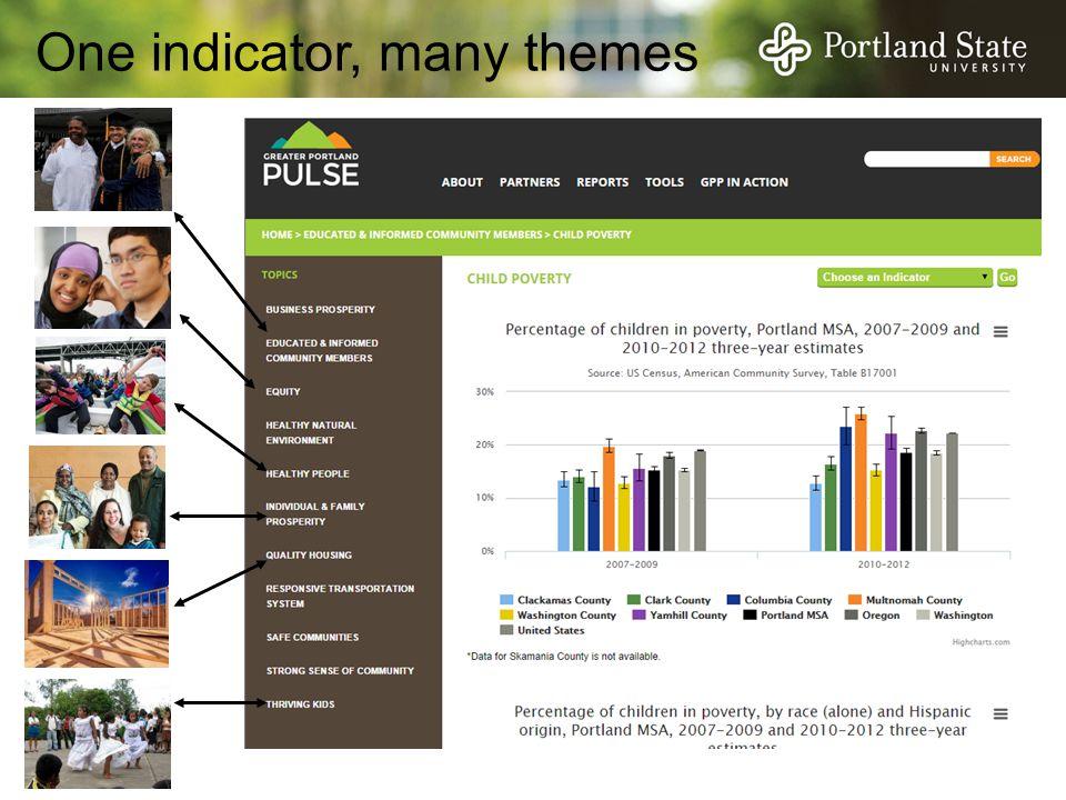 One indicator, many themes
