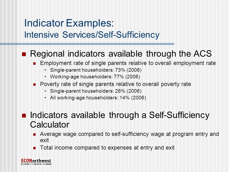 Indicator Examples: Intensive Services/Self-Sufficiency Regional indicators available through the ACS Employment rate of single parents relative to overall employment rate Single-parent householders: 73% (2006) Working-age householders: 77% (2006) Poverty rate of single parents relative to overall poverty rate Single-parent householders: 26% (2006) All working-age householders: 14% (2006) Indicators available through a Self-Sufficiency Calculator Average wage compared to self-sufficiency wage at program entry and exit Total income compared to expenses at entry and exit