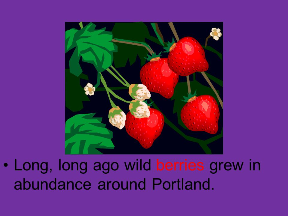The first strawberry patch was planted on the ground where the Farmers Bank now stands.