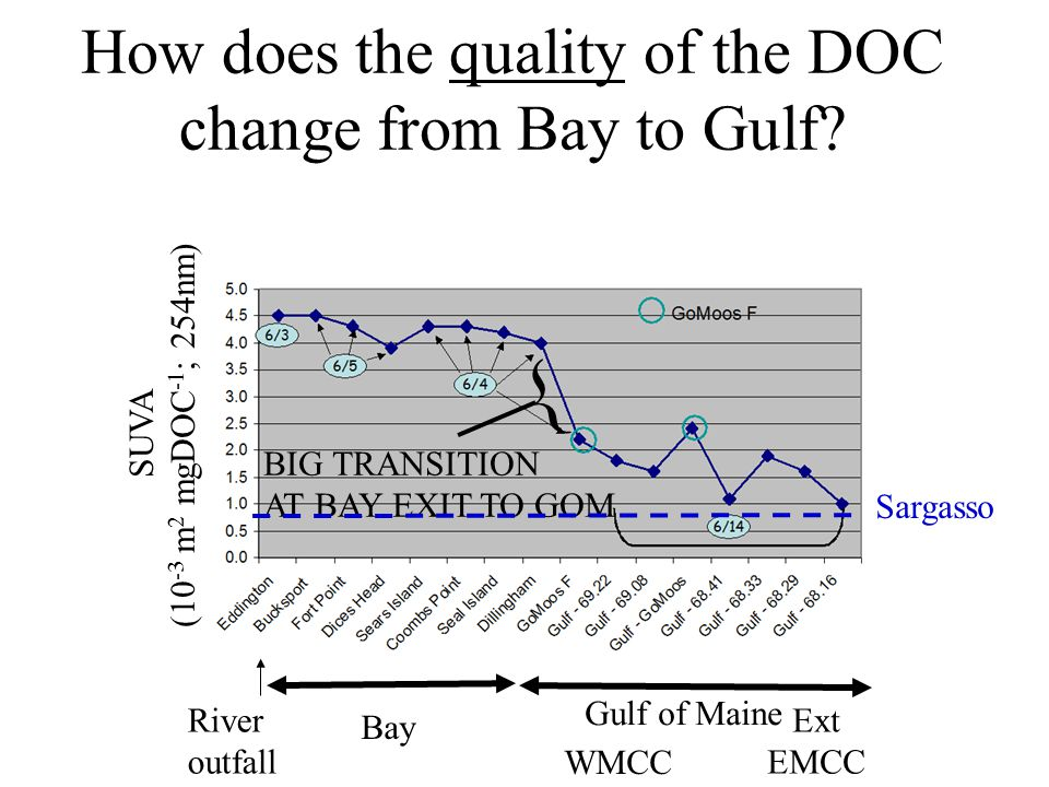 How does the quality of the DOC change from Bay to Gulf.