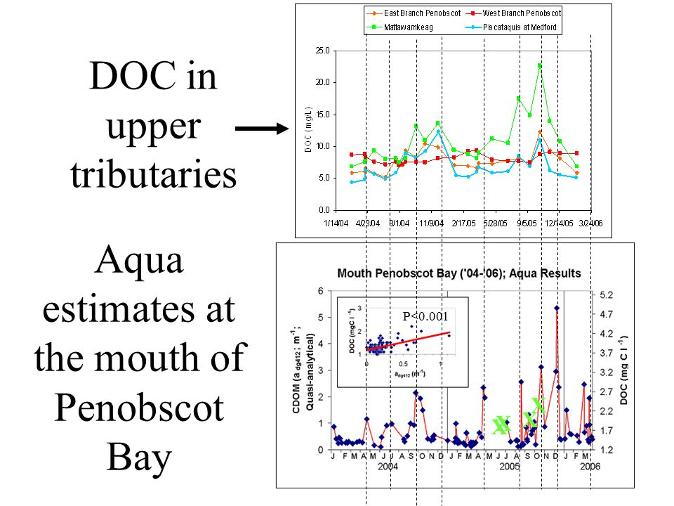 Aqua estimates at the mouth of Penobscot Bay X X P<0.001 X X DOC in upper tributaries
