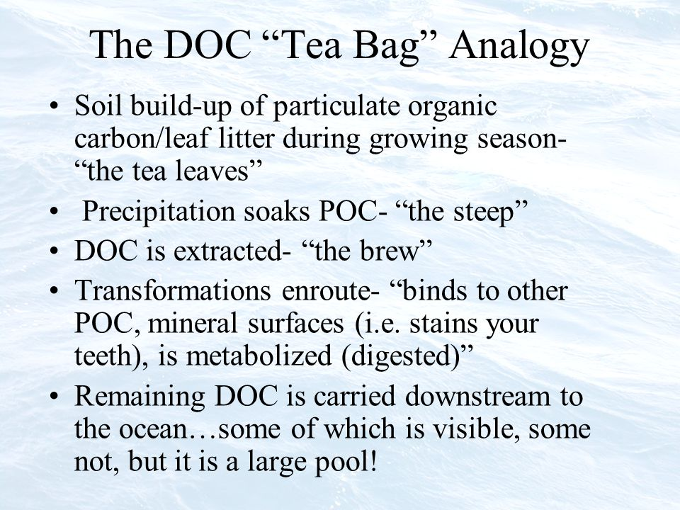 The DOC Tea Bag Analogy Soil build-up of particulate organic carbon/leaf litter during growing season- the tea leaves Precipitation soaks POC- the steep DOC is extracted- the brew Transformations enroute- binds to other POC, mineral surfaces (i.e.