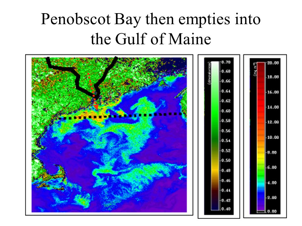 Penobscot Bay then empties into the Gulf of Maine