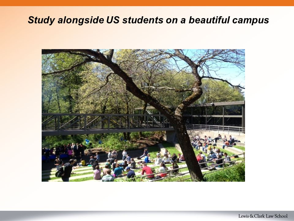 Study alongside US students on a beautiful campus