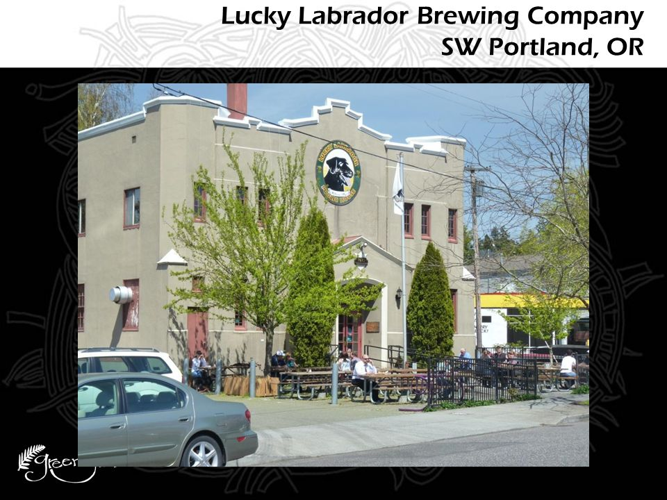Lucky Labrador Brewing Company SW Portland, OR