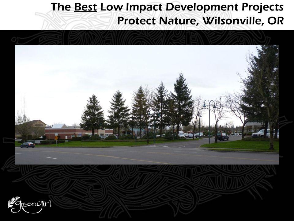 The Next Best Low Impact Development Projects Mimic Nature