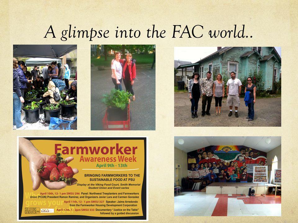 A glimpse into the FAC world..