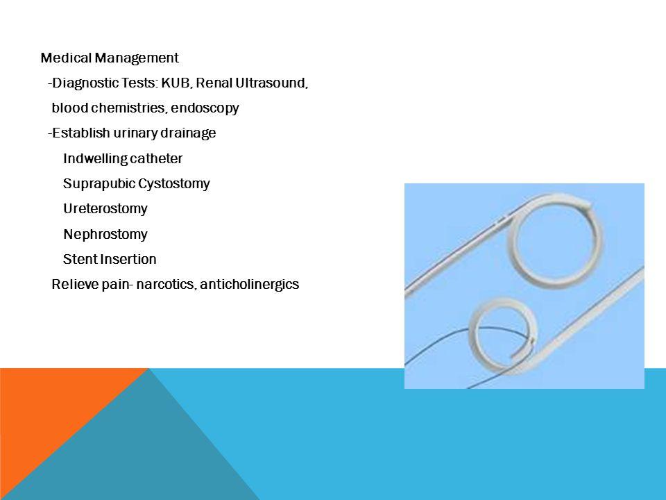 Medical Management -Diagnostic Tests: KUB, Renal Ultrasound, blood chemistries, endoscopy -Establish urinary drainage Indwelling catheter Suprapubic C