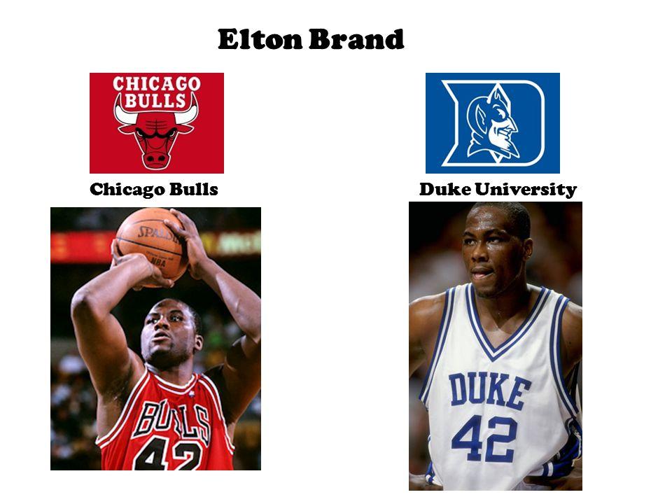 Elton Brand Chicago BullsDuke University