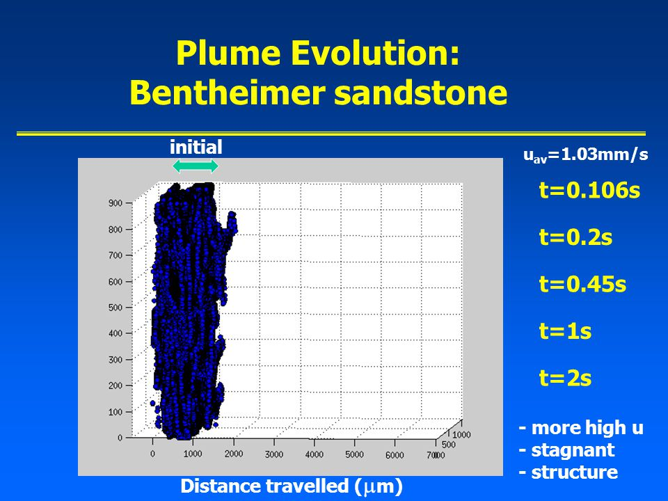 Plume Evolution: Bentheimer sandstone initial Distance travelled (  m) t=0.106s t=0.2s t=0.45s t=1s t=2s - more high u - stagnant - structure u av =1.03mm/s