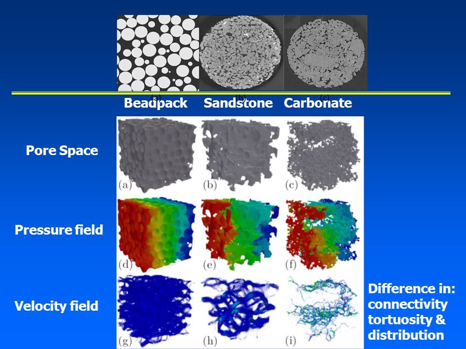 BeadpackSandstoneCarbonate Pore Space Pressure field Velocity field Difference in: connectivity tortuosity & distribution