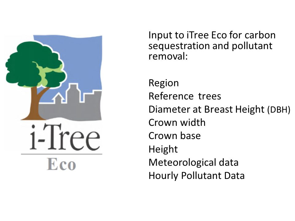 Input to iTree Eco for carbon sequestration and pollutant removal: Region Reference trees Diameter at Breast Height (DBH) Crown width Crown base Height Meteorological data Hourly Pollutant Data