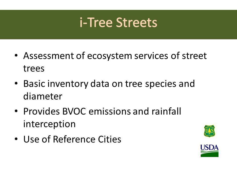Assessment of ecosystem services of street trees Basic inventory data on tree species and diameter Provides BVOC emissions and rainfall interception Use of Reference Cities