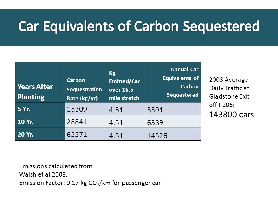 Years After Planting Carbon Sequestration Rate (kg/yr) Kg Emitted/Car over 16.5 mile stretch Annual Car Equivalents of Carbon Sequestered 5 Yr.