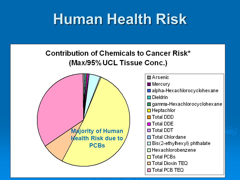 Majority of Human Health Risk due to PCBs Human Health Risk Majority of Human Health Risk due to PCBs