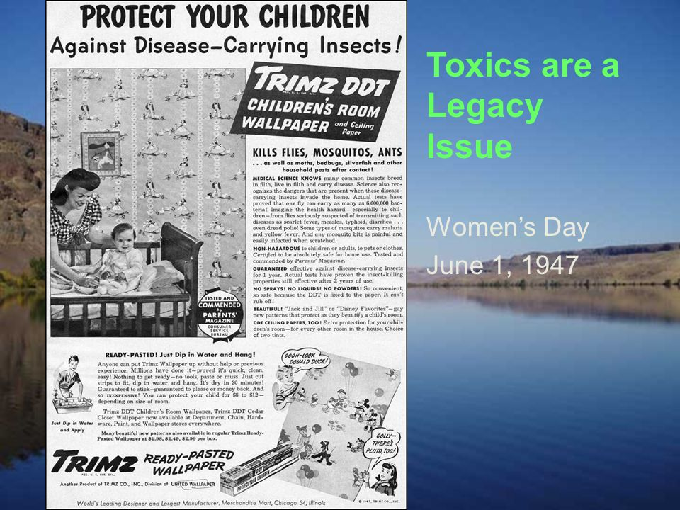 Pollution Prevention is the Key to Reduce Toxics