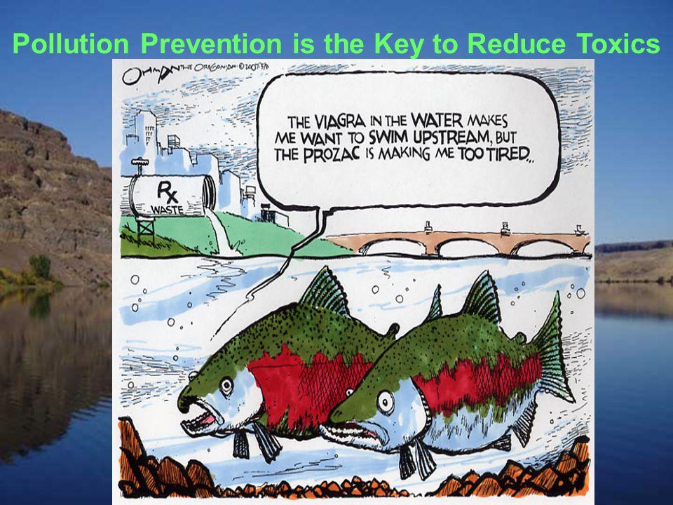 PCBs in the Columbia River Basin Fish advisories –Lower Columbia [OR & WA] –Columbia River above Bonneville [crayfish] –Walla Walla –Wenatchee –Spokane –Columbia Slough –Willamette –Flathead Lake –Seeley Lake