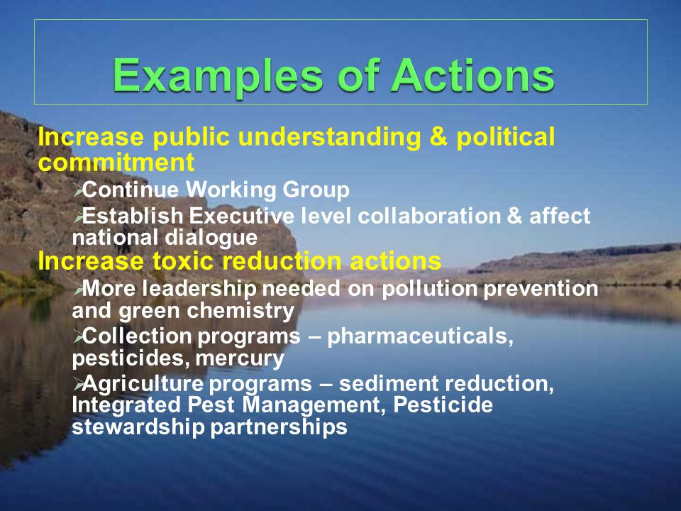 Increase public understanding & political commitment  Continue Working Group  Establish Executive level collaboration & affect national dialogue Increase toxic reduction actions  More leadership needed on pollution prevention and green chemistry  Collection programs – pharmaceuticals, pesticides, mercury  Agriculture programs – sediment reduction, Integrated Pest Management, Pesticide stewardship partnerships