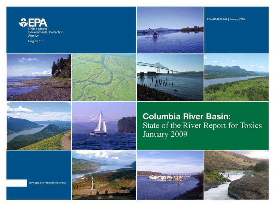 2009 Columbia River Basin State of the River Report for Toxics Contaminants of Concern Toxics are widely distributed and at levels of concern throughout Basin Reduction efforts have been successful Gaps in sources, effects and levels Mercury – major source is air deposition, some regional sources DDT – Banned in 1972, still persists PCBs – Manufacturing banned in 1979, still widespread, learning about new sources PBDEs – flame retardants are a growing concern