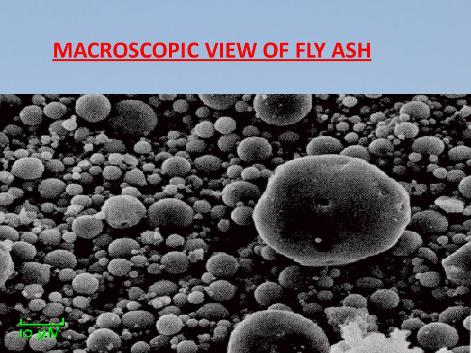 MACROSCOPIC VIEW OF FLY ASH