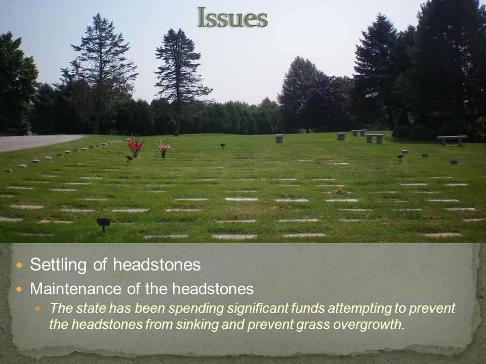 Settling of headstones Maintenance of the headstones The state has been spending significant funds attempting to prevent the headstones from sinking and prevent grass overgrowth.