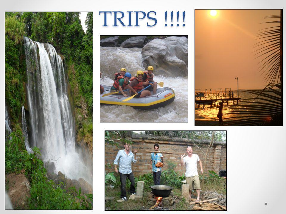 TRIPS !!!!